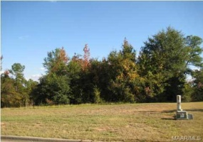 194 MACALLISTER Ridge- Millbrook- Alabama, ,Lots/acreage & farms,For Sale,MACALLISTER,259378
