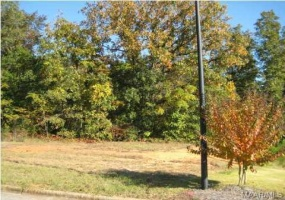 574 MCKEITHEN Place- Millbrook- Alabama, ,Lots/acreage & farms,For Sale,MCKEITHEN,259386