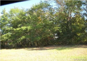 592 MCKEITHEN Place- Millbrook- Alabama, ,Lots/acreage & farms,For Sale,MCKEITHEN,259416