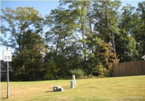 48 MACALLISTER Ridge- Millbrook- Alabama, ,Lots/acreage & farms,For Sale,MACALLISTER,259417