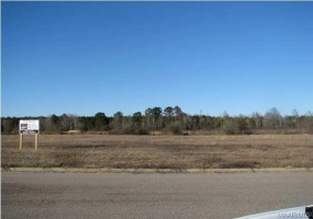 CHANTILLY Place, Pike Road, Alabama, ,Lots/acreage & farms,For Sale,CHANTILLY,314098