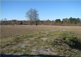 CHANTILLY Place, Pike Road, Alabama, ,Lots/acreage & farms,For Sale,CHANTILLY,314099