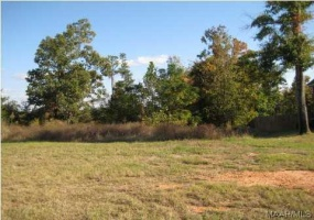 136 MACALLISTER Ridge- Millbrook- Alabama, ,Lots/acreage & farms,For Sale,MACALLISTER,259418
