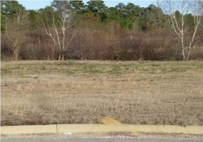 CHANTILLY Place, Montgomery, Alabama, ,Lots/acreage & farms,For Sale,CHANTILLY,314105
