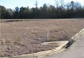 CHANTILLY Place, Montgomery, Alabama, ,Lots/acreage & farms,For Sale,CHANTILLY,314110