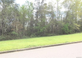 234 MACALLISTER Ridge- Millbrook- Alabama, ,Lots/acreage & farms,For Sale,MACALLISTER,259504