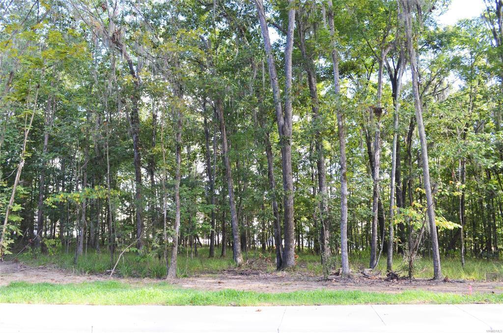 41 Hannah Lane, Pike Road, Alabama, ,Lots/acreage & farms,For Sale,Hannah,450252