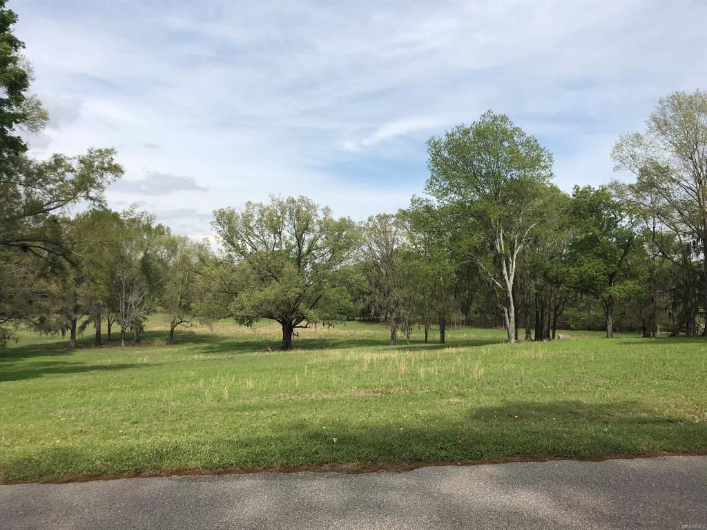 416 Oak View Drive, Pike Road, Alabama, ,Lots/acreage & farms,For Sale,Oak View,470525