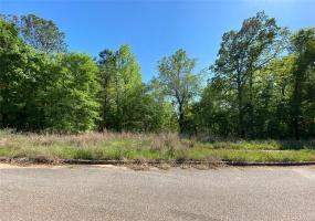 0 Golson Boulevard, Prattville, Alabama, ,Lots/acreage & farms,For Sale,Golson,470726