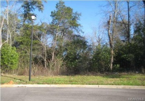 69 HASTINGS Hollow- Millbrook- Alabama, ,Lots/acreage & farms,For Sale,HASTINGS,290510