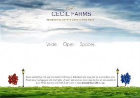 Cecil Farms ., Pike Road, Alabama, ,Lots/acreage & farms,For Sale,Cecil Farms,301528
